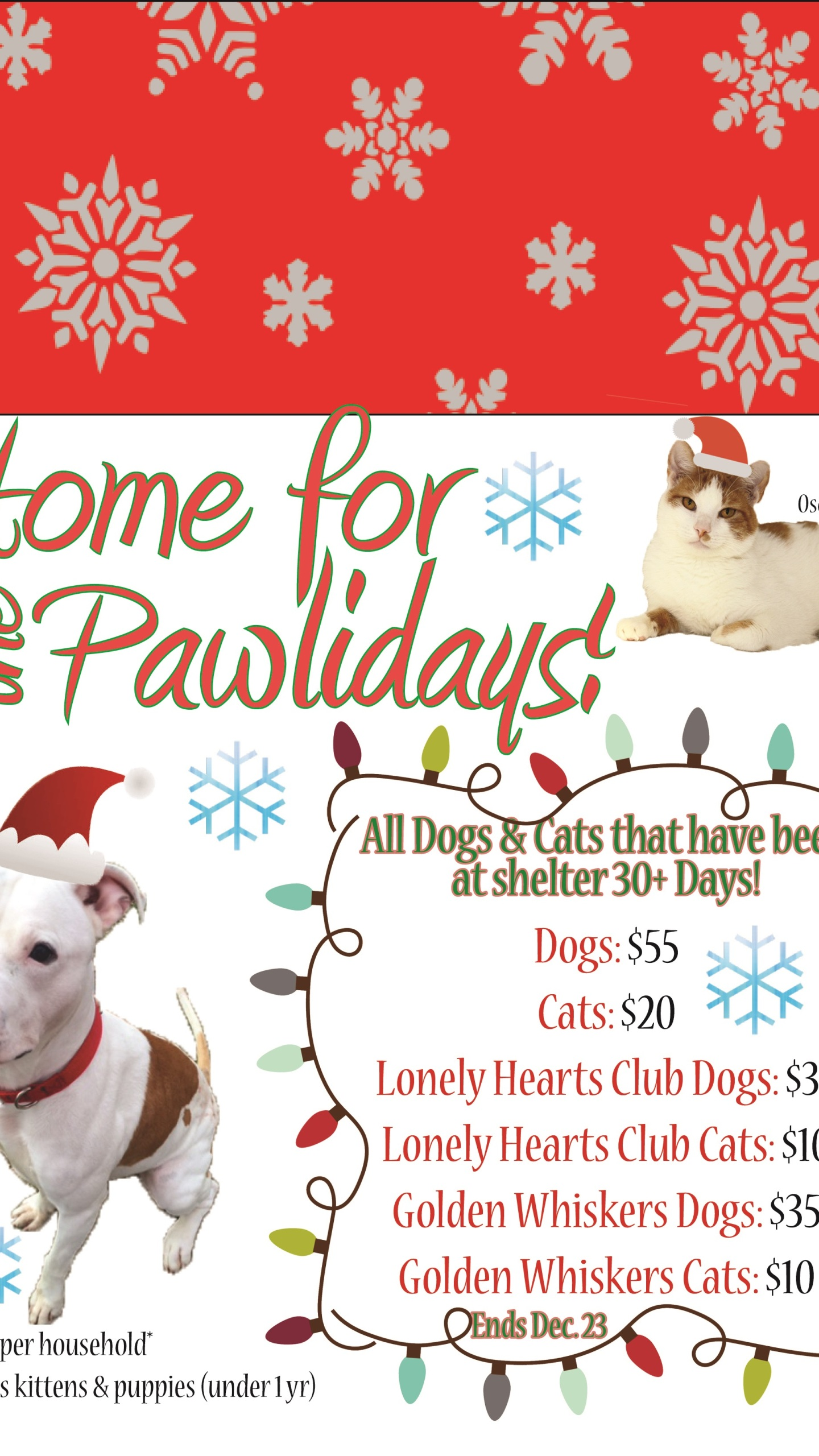 Home for the Pawlidays Flyer_1449853249572.jpg