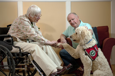 woman-shaking-hands-with-dog_1465403892513.jpg