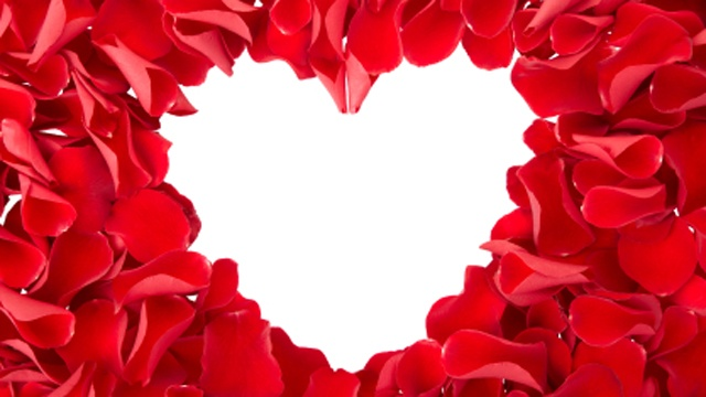 Valentines-Day-hearts-with-flower-petals-cropped-jpg_167188_ver1_20161215084044-159532