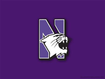 Northwestern_logo_1489360414448.jpg