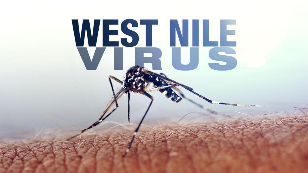 west nile generic_1505849668003.jpg