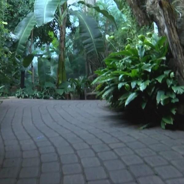 Destination Illinois: Rock Island's Botanical Center
