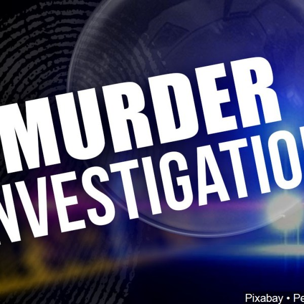 murder investigation generic
