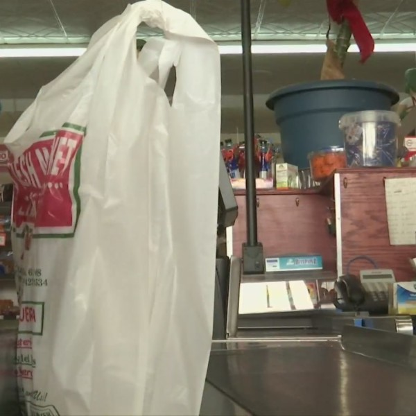 Local shoppers react to proposed plastic bag tax