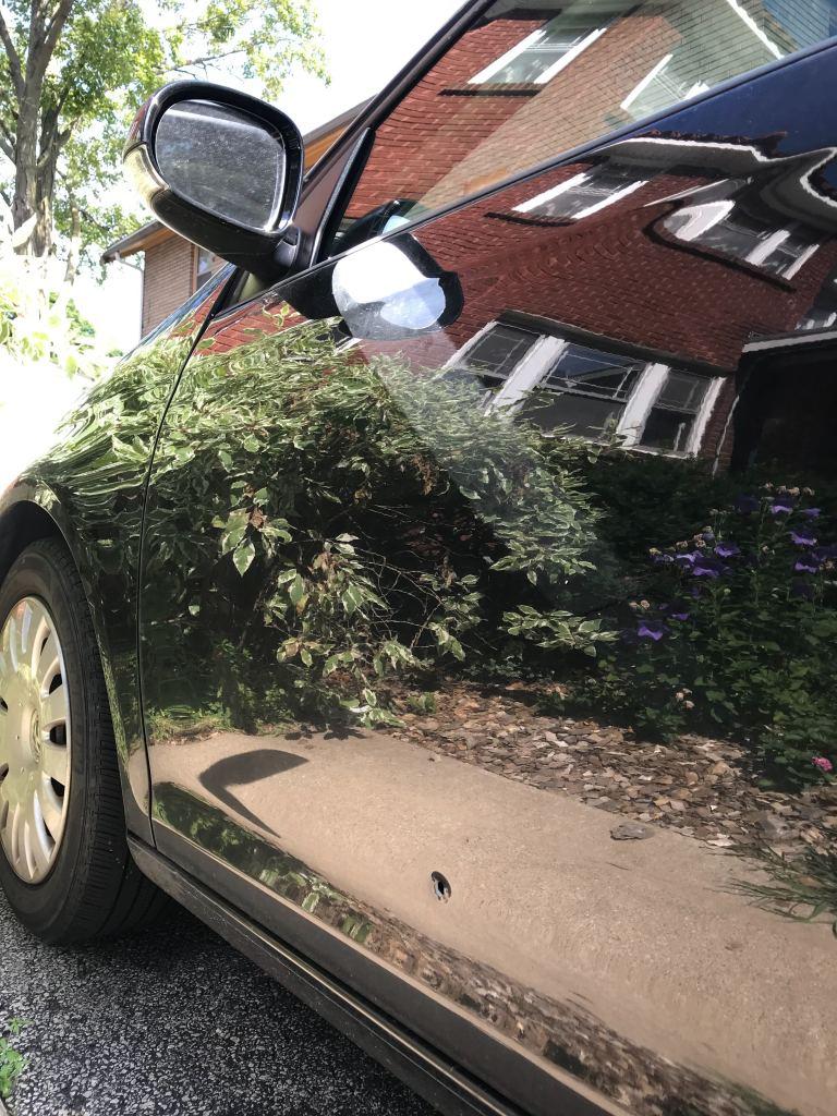 Rockford Police investigate shooting near Auburn Street