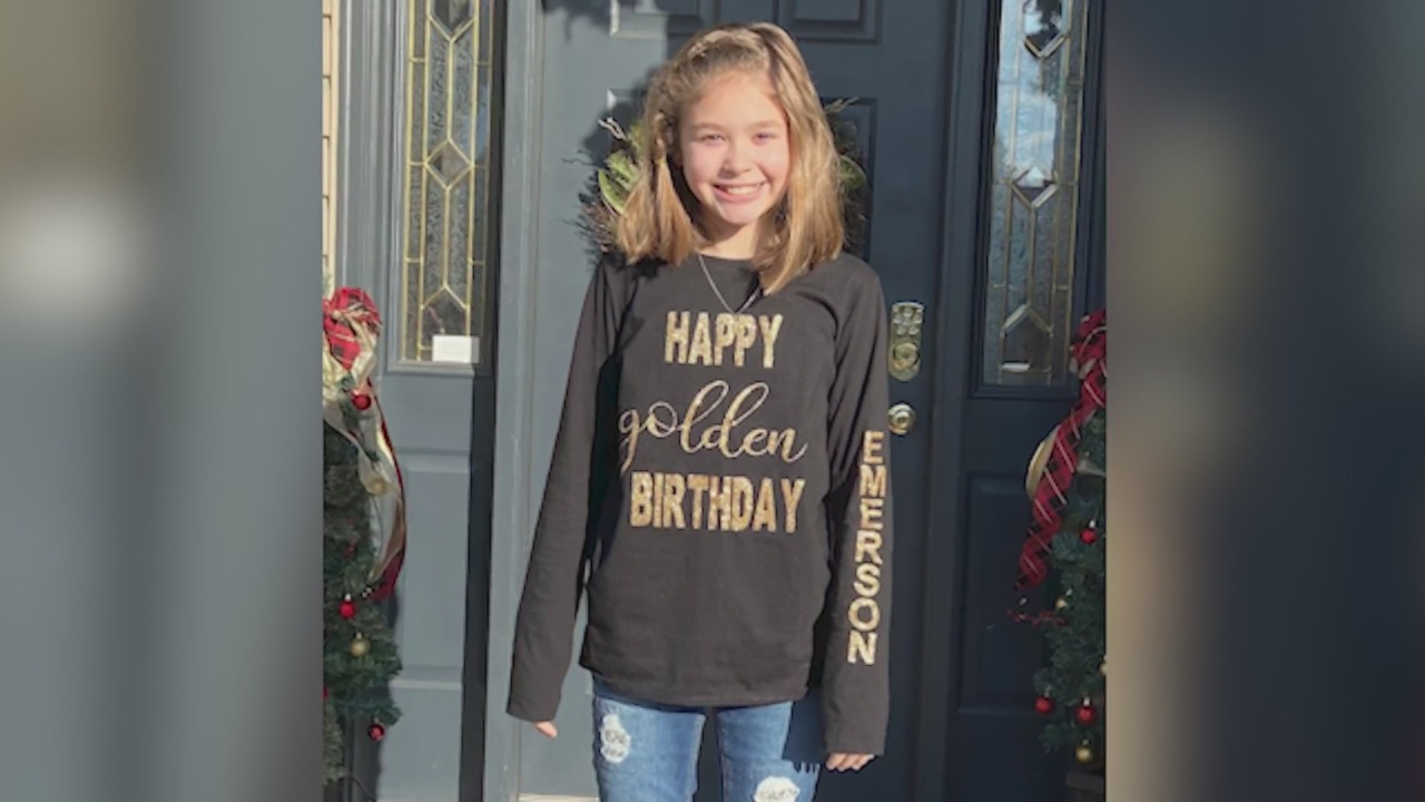 www.mystateline.com: Small business is close to raising ,000 for Winnebago girl with rare blood disease